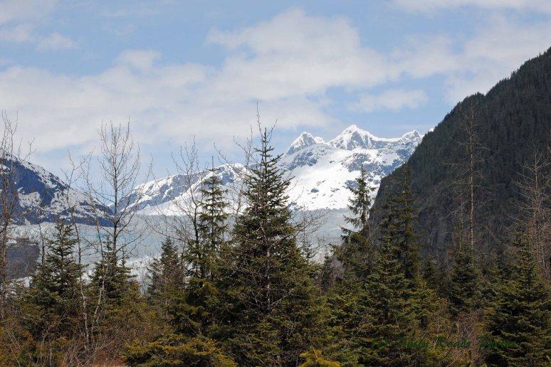 Alaska2013 282a copy