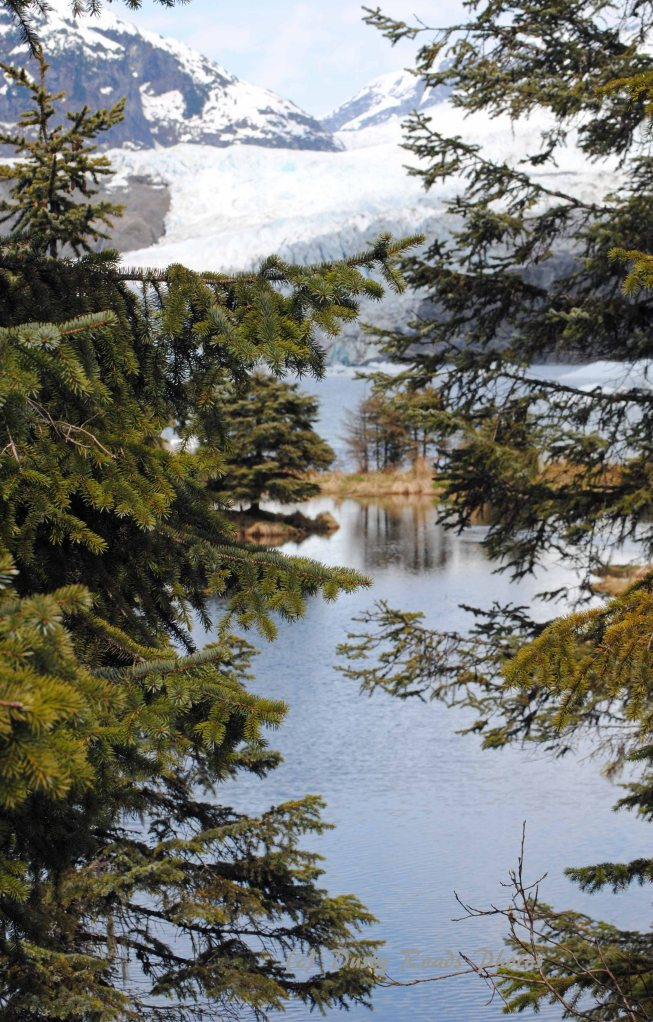 Alaska2013 291a copy