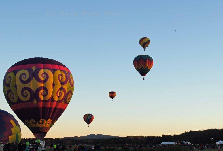 balloon festival 201a copy