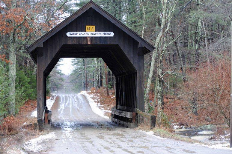Swamp Meadow Bridge 003a copy