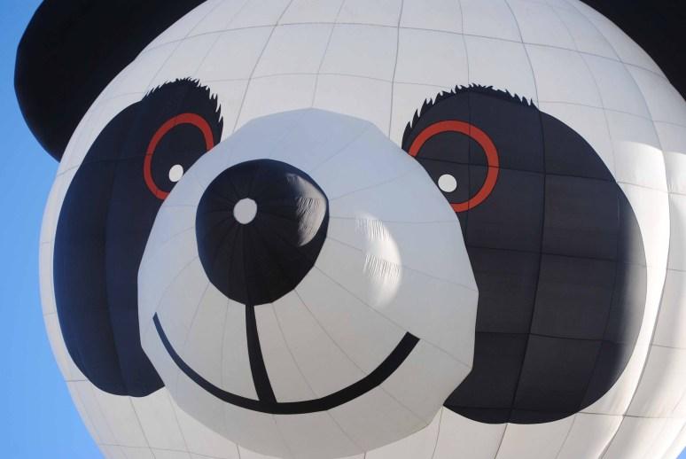 Balloons 2014 054 copy