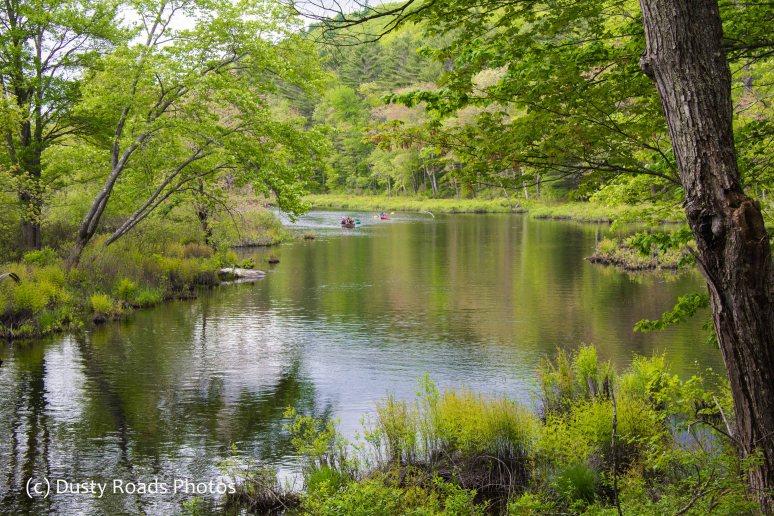 Spring river paddling, kayaks
