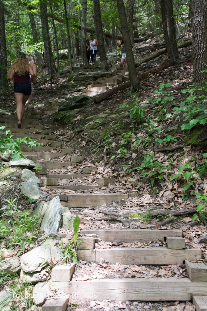Steep trail and wooden stairs