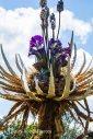 Amazing Pandora Flower